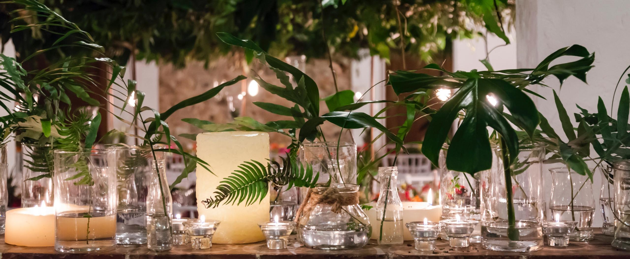 Floristeria en Boadilla del Monte. Bonsai Floristas. Decoración de fiestas privadas, presentaciones corporativas, grandes eventos....